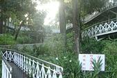 2016嘉義 竹崎親水公園:2016嘉義竹崎親水公園 (19).jpg