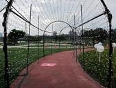板橋蝴蝶公園(白天):IMG_0026.JPG