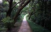 永春崗步道:012.JPG