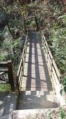 內湖鯉魚山碧湖步道:DSC_0081.JPG