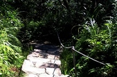內湖鯉魚山碧湖步道:DSC_0036.JPG