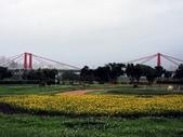 板橋蝴蝶公園(白天):IMG_0011.JPG