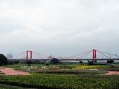板橋蝴蝶公園(白天):IMG_0013.JPG