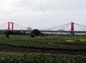 板橋蝴蝶公園(白天):IMG_0029.JPG