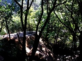 內湖鯉魚山碧湖步道:DSC_0038.JPG
