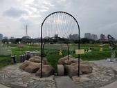 板橋蝴蝶公園(白天):IMG_0014.JPG
