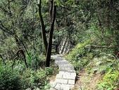 內湖鯉魚山碧湖步道:IMG_0060.JPG