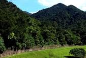 內湖鯉魚山碧湖步道:DSC_0039.JPG