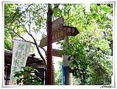 土城桐花公園:IMG_0984.JPG