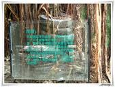 2011暑假快樂遊-台南古蹟美食之旅:IMG_8561.JPG