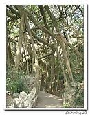 高雄壽山動物園200204:04140019.jpg