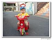 劍潭古道200504:IMG_4380.jpg