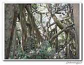 高雄壽山動物園200204:04140021.jpg