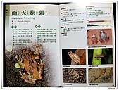 自然生態攝影(20110714Updated):DSCN0866.JPG