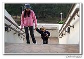 嘉義市射日塔200602:100_1667.jpg