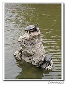 左營蓮池潭風景區200404:P4080014.jpg