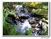 士林-天溪園生態中心(20090606):2IMG_8494.jpg
