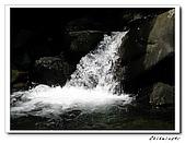 士林-天溪園生態中心(20090606):2IMG_8505.jpg