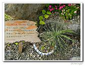 知卡宣森林公園:IMG_1739.jpg