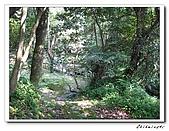 士林-天溪園生態中心(20090606):2IMG_8597.jpg