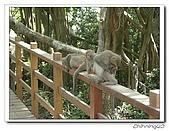 高雄壽山動物園200204:04140047.jpg