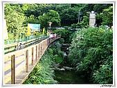 土城承天禪寺爬山:IMG_0726.JPG