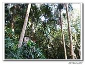 士林-天溪園生態中心(20090606):2IMG_8603.jpg