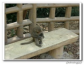 高雄壽山動物園200204:04140048.jpg