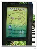 龍崗自然登山步道(20090627):IMG_9555.jpg