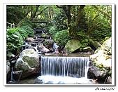 士林-天溪園生態中心(20090606):2IMG_8624.jpg