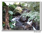 士林-天溪園生態中心(20090606):2IMG_8683.jpg