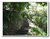 龍崗自然登山步道(20090627):IMG_9557.jpg