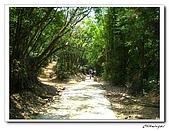 士林內湖-大崙頭山(20090607):IMG_8742.jpg