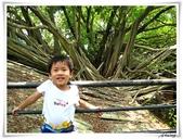 2011暑假快樂遊-台南古蹟美食之旅:IMG_8568.JPG