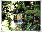 陽明山山谷遊樂區:IMG_2692.JPG