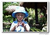 綠世界200610:100_4820.jpg