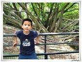 2011暑假快樂遊-台南古蹟美食之旅:IMG_8570.JPG