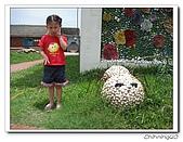 馬蹄蛤200706:IMG_2245.jpg