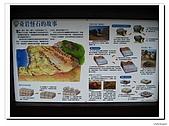 野柳地質公園:IMG_4982.jpg