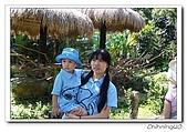 綠世界200610:100_4828.jpg