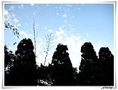 土城承天禪寺爬山:IMG_0753.JPG