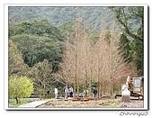 福山植物園200301:P1180334.jpg