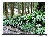 福山植物園200301:P1180344.jpg