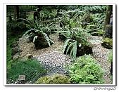 福山植物園200301:P1180358.jpg