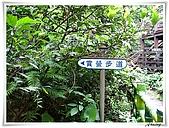 土城桐花公園:IMG_1015.JPG