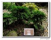 福山植物園200301:P1180362.jpg