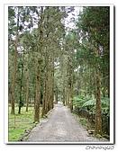 福山植物園200301:P1180371.jpg