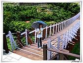 白石湖吊橋_賞百合花:IMG_2105.JPG