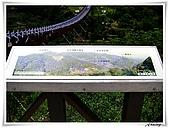白石湖吊橋_賞百合花:IMG_2106.JPG