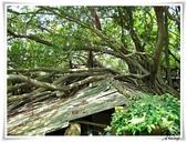2011暑假快樂遊-台南古蹟美食之旅:IMG_8580.JPG